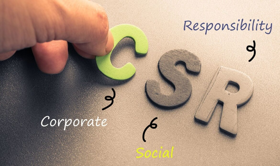 Look For The Right CSR Options